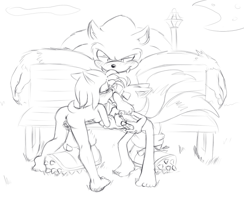 werehog the tails sonic and Pokemon x & y serena