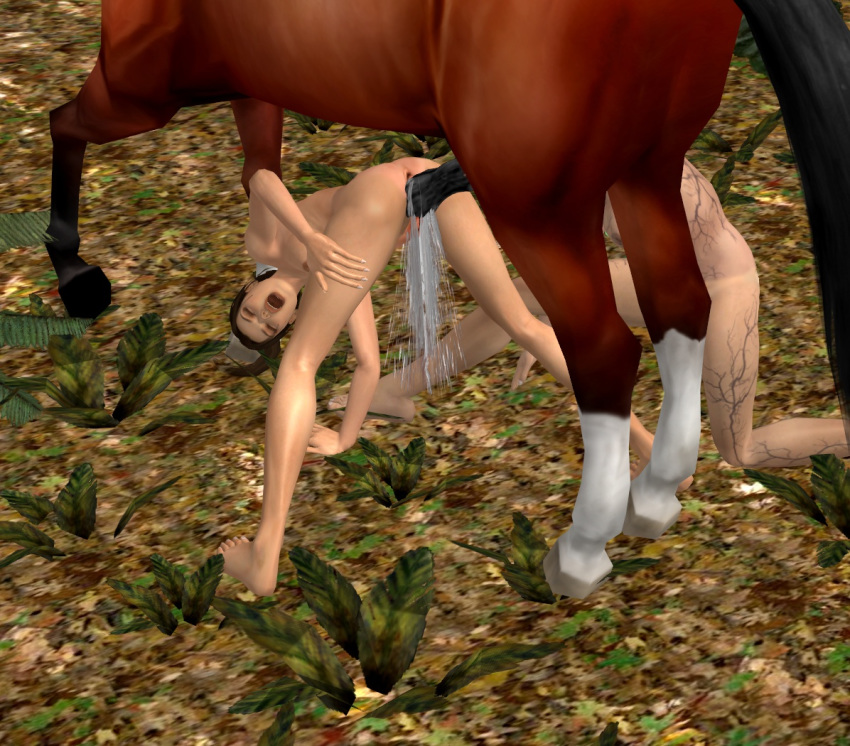 raider with horse lara tomb Lord marksman and vanadis valentina